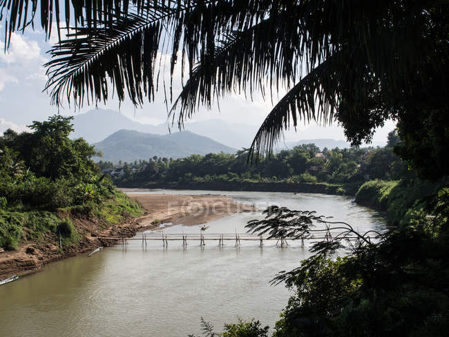 Nam Kang River with mountains, bamboo bridge, and palm trees, Luang Prabang, Laos, Indochina, Southeast Asia, Asia — Stock Photo