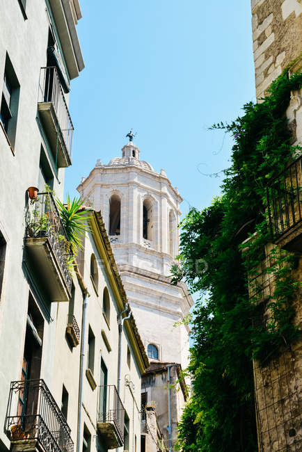 Girona Cathedral on old street with traditional architecture, Girona, Catalonia, Spain — Stock Photo