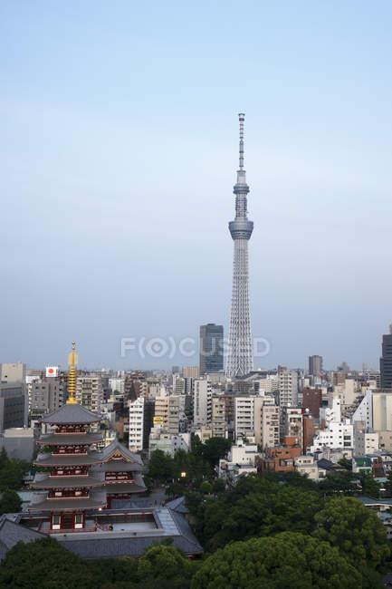 Переглянути над містом з токійське небесне і Five-Storied пагода, Токіо, Японія, Азії — стокове фото