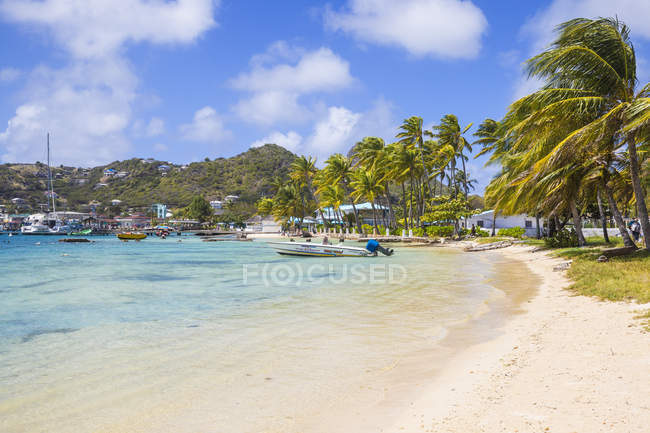 Paradise sandy beach with palm trees, Clifton Harbour, Union Island, West Indies, Caribbean, Central America — Stock Photo