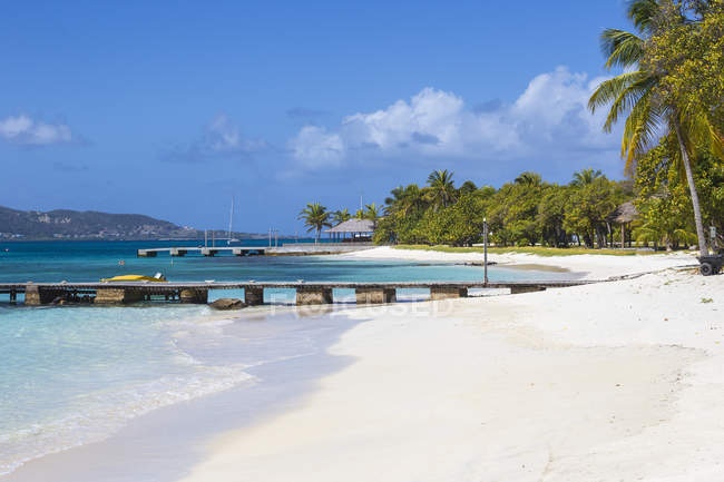 Jetty on white sand beach with palm trees, Petit St. Vincent, The Grenadines, West Indies, Caribbean, Central America — Stock Photo
