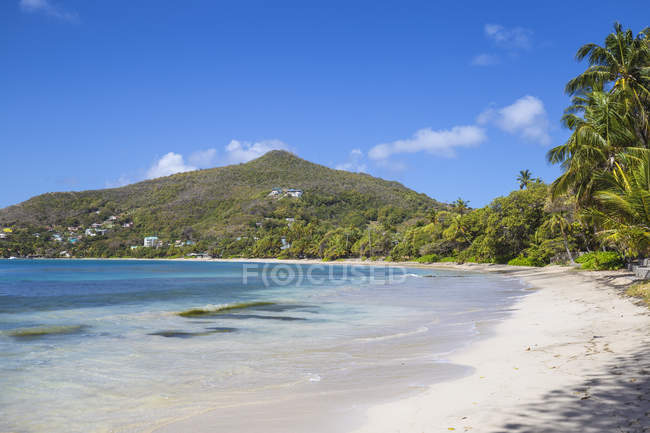 Paradise white sand beach, Friendship Bay, Bequia, The Grenadines, West Indies, Caribbean, Central America — Stock Photo