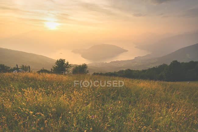 Gräser am Hang bei Sonnenuntergang mit See im Hintergrund, Montisola, Provinz Brescia, Lombardei Bezirk, Italien — Stockfoto