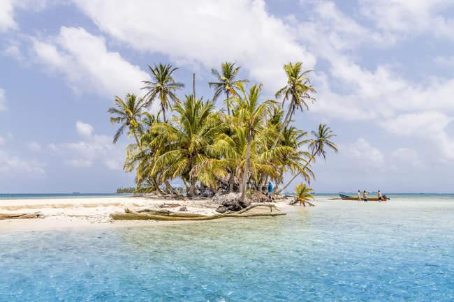 Paradise Island Pelicano de palmiers des îles San Blas, Kuna Yala, Panama, Amérique centrale — Photo de stock