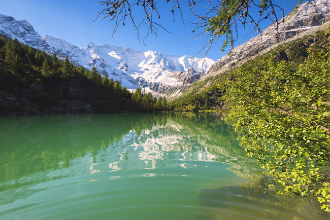 Turquoise Aviolo Lake in Adamello Park with snowy mountains on background, Val Camonica, Brescia province, Lombardy, Italy — Stock Photo