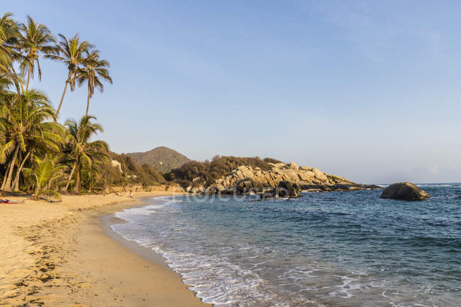 Palm trees on sandy beach in Tayrona National Park, Colombia, South America — Stock Photo