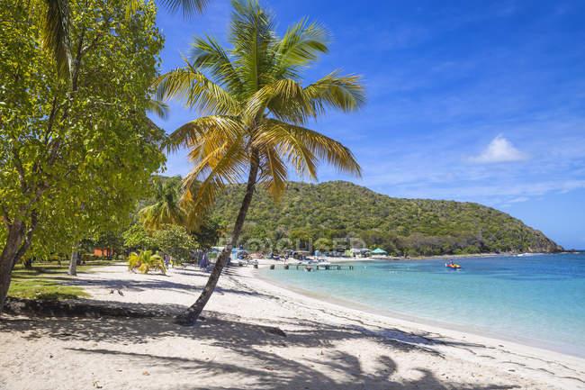 Paradise sandy beach, Saltwhistle Bay, Mayreau, The Grenadines, West Indies, Caribbean, Central America — Stock Photo