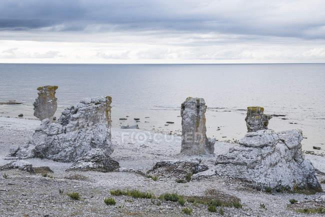 Exclusivo Langhammars pilhas de mar, Faro, Gotland, Sweden, Scandinavia, Europa — Fotografia de Stock
