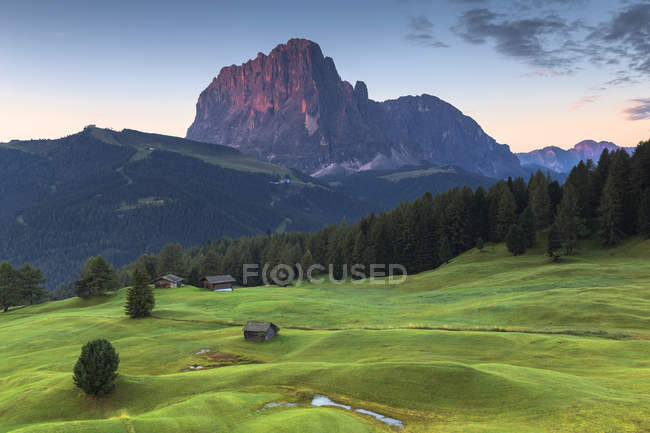 Coucher de soleil sur la vallée verdoyante et Sassolungo pic, Daunei, Selva Val Gardena, Tyrol du Sud, Dolomites, Val Gardena, Italie — Photo de stock