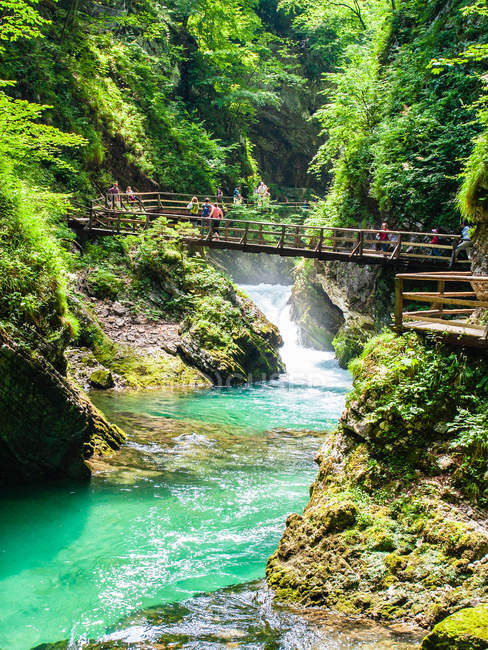 Bridge over picturesque turquoise Radovna River flowing through Vintgar Gorge, near Bled, Slovenia, Europe — стокове фото
