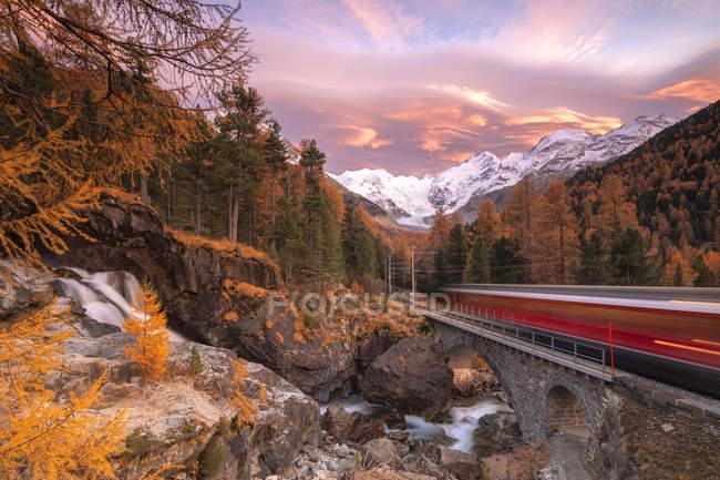 Bernina Express train in transit along colorful woods in autumn, Morteratsch, Engadine, canton of Graubunden, Switzerland, Europe — Stock Photo