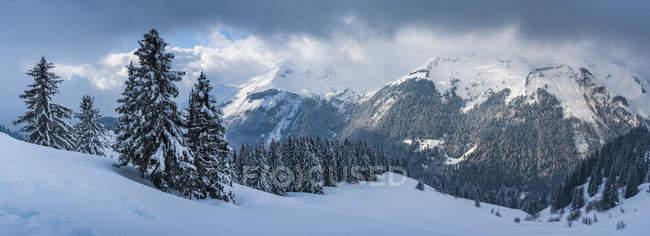 Paisagem de montanha de neve de inverno, área de esqui de Morzine, Port du Soleil, Auvergne Rhône Alpes, Alpes franceses, França, Europa — Fotografia de Stock