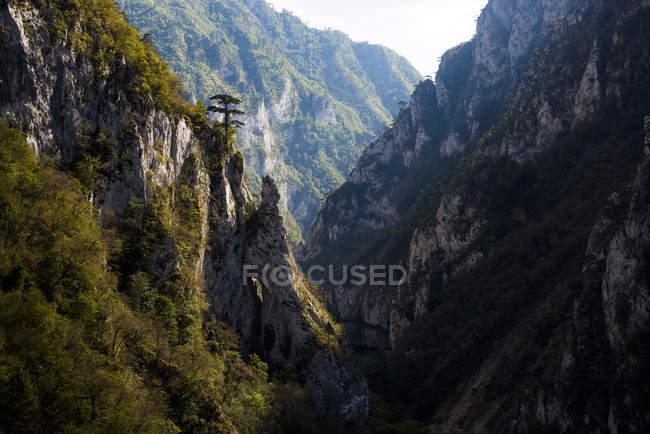 Rocky Mountains im Tara Canyon Schlucht im Sommer, Durmitor National Park, Montenegro, Europa — Stockfoto