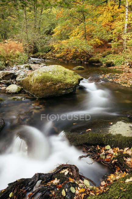 Close-up de Aira força cachoeira e outono folhagem, Parque Nacional de Lake District, Cumbria, Inglaterra, Reino Unido, Europa — Fotografia de Stock