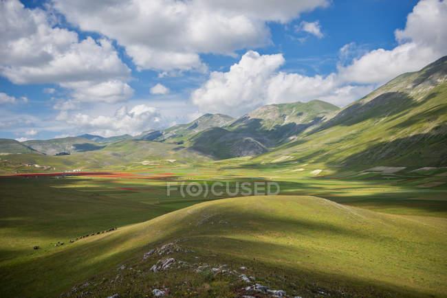 Green plateau Piano Grande di Castelluccio di Norcia in summer, Sibillini National Park, Umbria, Italy — стоковое фото
