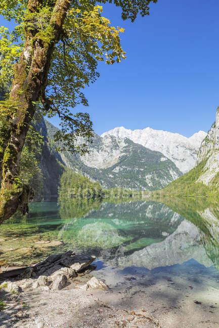 Montagne de Watzmann reflétant dans le lac Obersee, près de lac Koenigssee, Berchtesgadener Land, parc National de Berchtesgaden, Bavière, Bavière, allemand, Europe — Photo de stock
