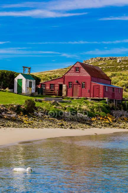 Vista panoramica di una casa rossa sulla West Point, Isole Falkland, Sud America — Foto stock