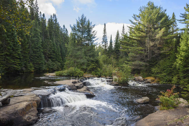 Waterfalls and woods in Algonquin Provincial Park, Ontario, Canada, North America — Stock Photo