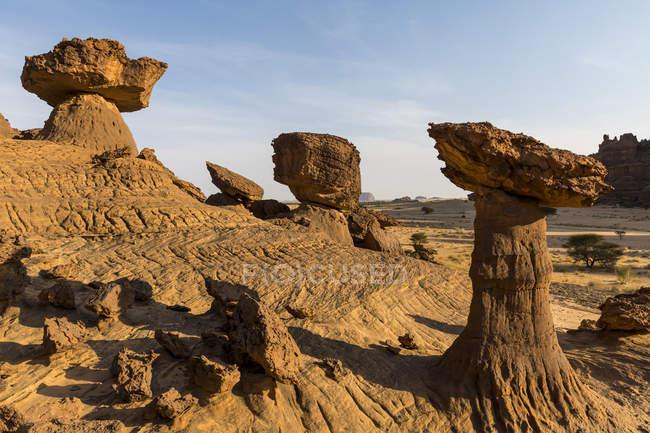 Грибные скальные образования в пустыне, Плато Эннеди, регион Эннеди, Чад, Африка — стоковое фото