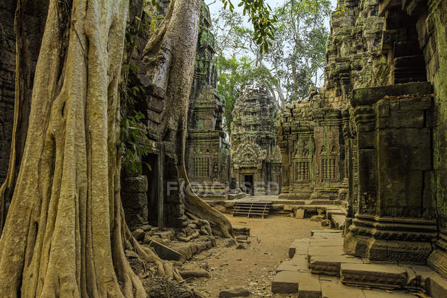 Galleries and gopura entrance at 12th century temple Ta Prohm, a Tomb Raider film location, Angkor, UNESCO World Heritage Site, Siem Reap, Cambodia, Indochina, Southeast Asia, Asia — Foto stock