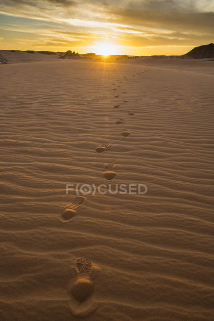 Следы в песчаных дюнах на закате возле озер Оунианга, Чад, Африка — стоковое фото