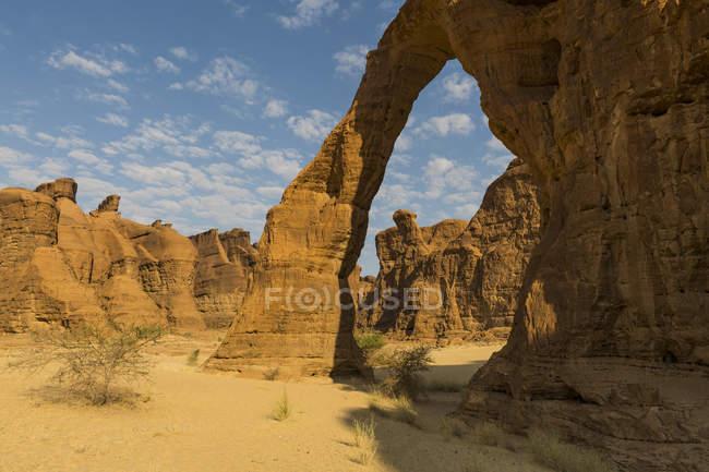 Арка скалы слона в пустыне, Плато Эннеди, регион Эннеди, Чад, Африка — стоковое фото