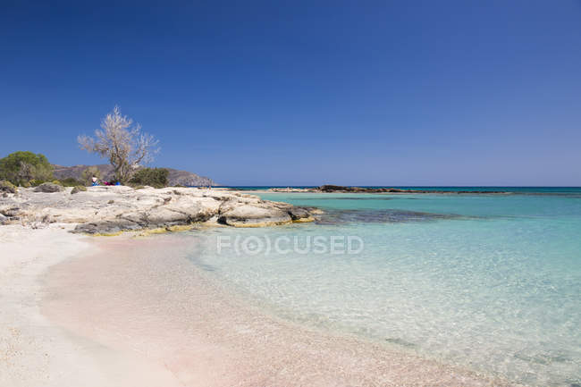 View Of Clear Turquoise Water With Pink Sand Beach