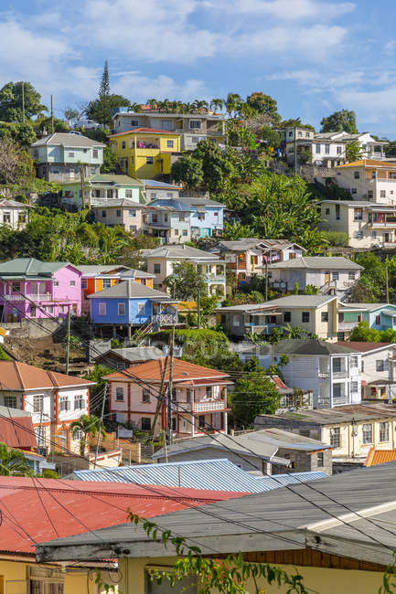 Vista de casas coloridas que negligenciam Carnarge de St. Georges, Grenada, consoles de Windward, Índias Ocidentais, Caraíbas, América Central — Fotografia de Stock