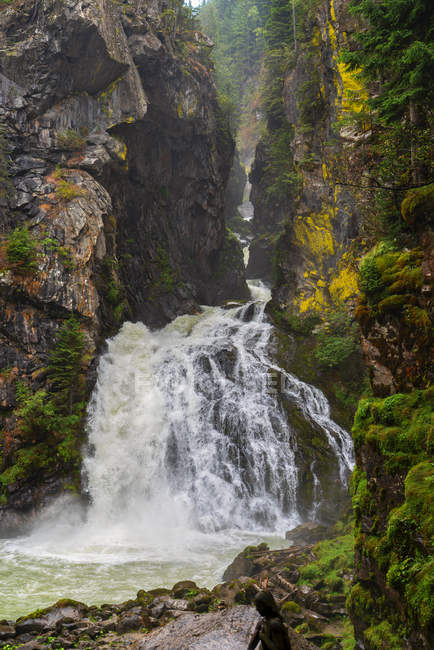 Riva waterfalls splashing in summer, Campo Tures, Aurina Valley, Trentino-Alto Adige, Italy, Europe — Stock Photo