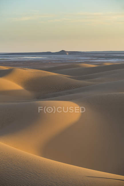 Sonnenuntergang in den riesigen Sanddünen der Sahara, Timimoun, Westalgerien, Nordafrika, Afrika — Stockfoto