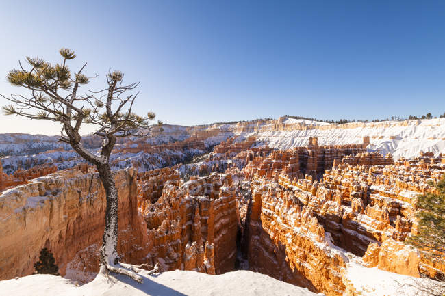 Rock formations covered with snow in Bryce Canyon National Park, Utah, United States of America, North America — Stock Photo