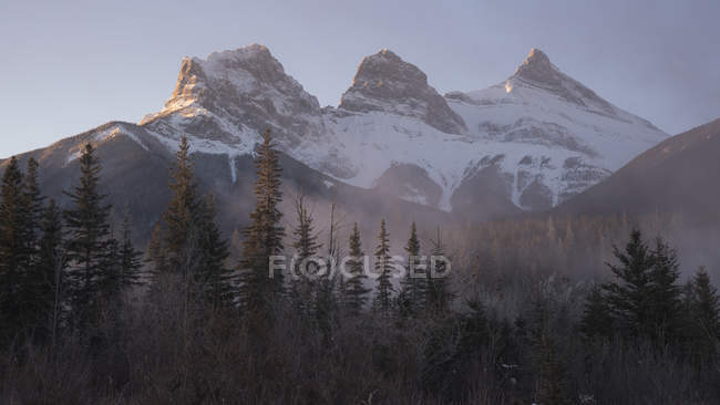 Peaks of Three Sisters at sunrise in winter with mountain mist, Canmore, Alberta, Canadian Rockies, Canada, North America — Photo de stock
