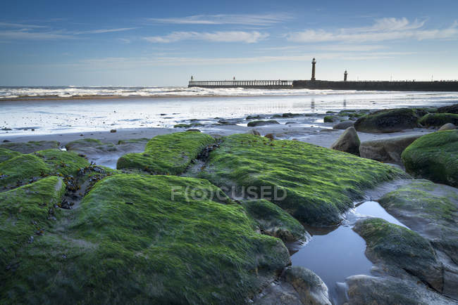 Whitby piers at low tide in winter, Whitby, North Yorkshire, Yorkshire, England, United Kingdom, Europe — стокове фото