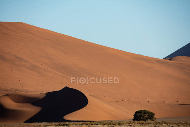 Sand dunes at sunset, Sossusvlei National Park, Namibia, Africa — стокове фото