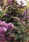 Vista del primo piano di assortiti fioritura erbe — Foto stock
