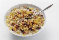 Muesli con frutta secca — Foto stock