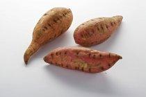 Rohe Süßkartoffeln — Stockfoto
