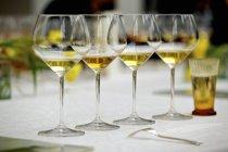 Set de verres à vin pour dégustation — Photo de stock