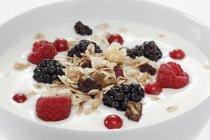 Muesli con frutti di bosco e yogurt — Foto stock