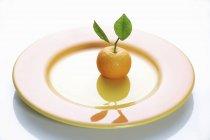 Clementine con foglie — Foto stock