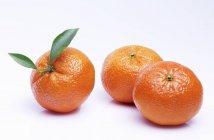 Mandarini maturi freschi — Foto stock