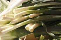 Cebollas verdes frescas - foto de stock