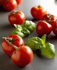 Rouge tomate et basilic — Photo de stock
