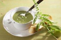 Zuppa di broccoli e basilico in ciotola bianca — Foto stock