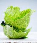 Savoy капуста-листя — стокове фото
