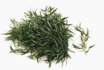 Mucchio di foglie di dragoncello fresco — Foto stock
