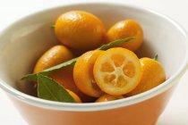 Fresh ripe kumquats — Stock Photo