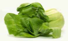 Close-up de fresco Pak choi — Fotografia de Stock