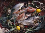 Poissons frais avec crustacés et légumes — Photo de stock