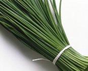 Mazzo di erba cipollina fresca — Foto stock